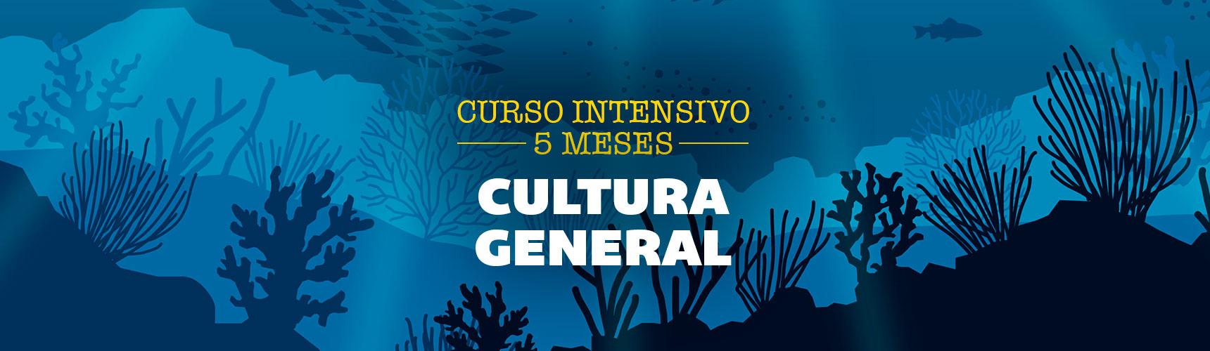 5meses_CULT_Pupitre_cursos_portada-web_nuevas-fotos_1720x910