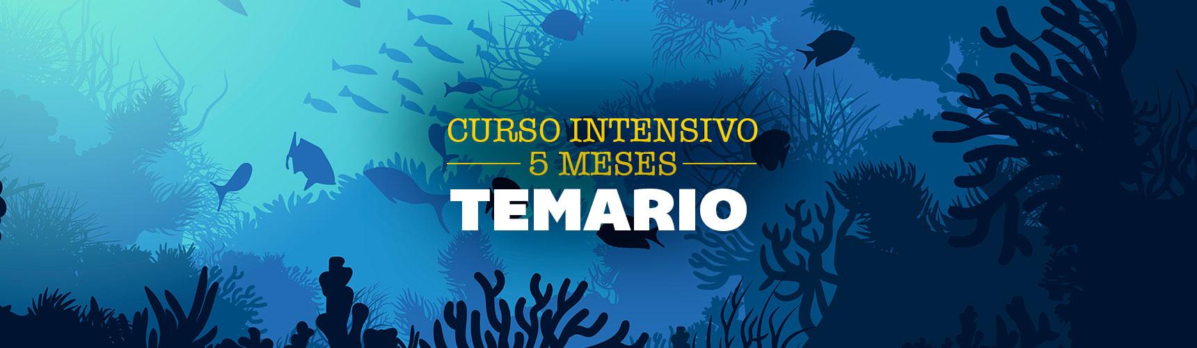 5meses_TEM_Pupitre_cursos_portada-web_nuevas-fotos_1720x910